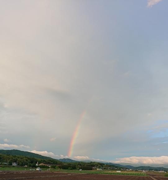闇の中の光 ~虹と月と~ ***_e0290872_15104785.jpg