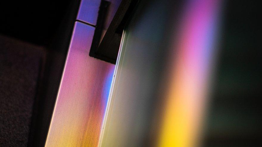 皐月の陽光に踊る原色の光蜥蜴たち_d0353489_20231834.jpg