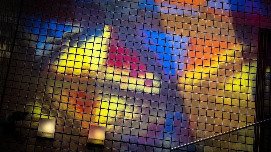 皐月の陽光に踊る原色の光蜥蜴たち_d0353489_20233161.jpg