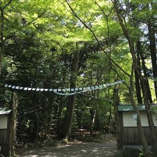 village三島楽寿園_a0213793_09240002.jpg