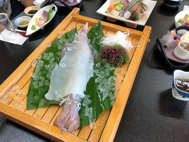 2019波戸岬イカ合宿_c0233101_16532645.jpg