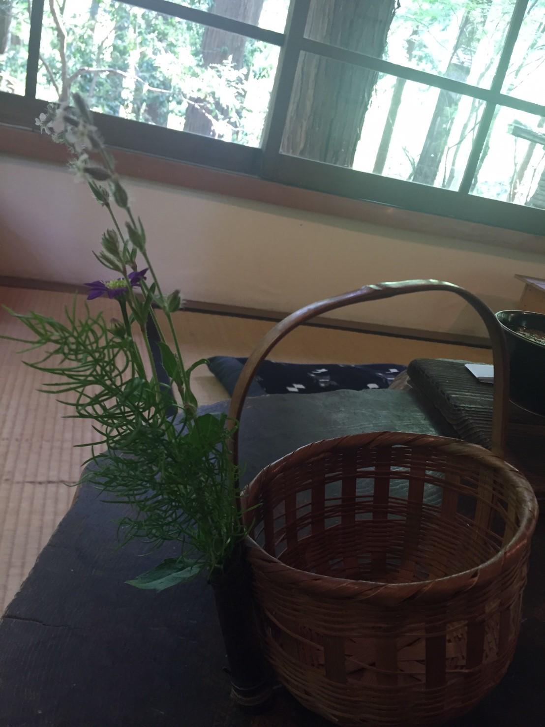 春の  みたき園_e0115904_13430243.jpg