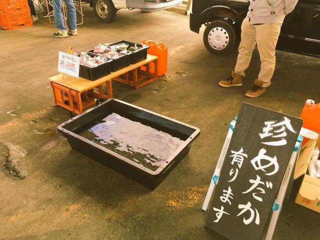 5/26(日)8時~令和初の『ロータリー朝市』銚子大橋たもとにて開催!_f0229750_11113735.jpg