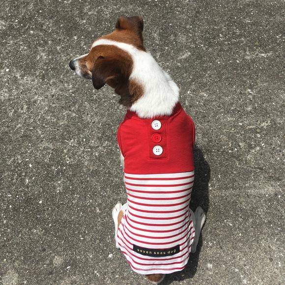 seven seas dog COOLISH Border T セブンシーズドッグ クーリッシュ ボーダーTシャツ ミラキュラス クール_d0217958_12362772.jpg