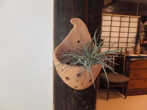 楽しい植木鉢と花器・二人展~4(記録用)_d0336460_20301622.jpg