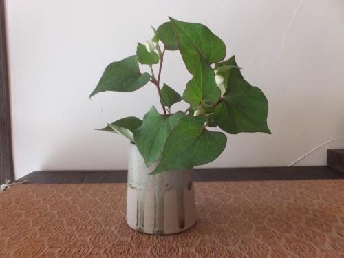 楽しい植木鉢と花器・二人展~6(記録用)_d0336460_20393301.jpg