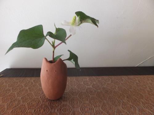 楽しい植木鉢と花器・二人展~6(記録用)_d0336460_20404380.jpg