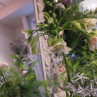 オークリーフ花の教室(山田さんの作品)_f0049672_17340921.jpg