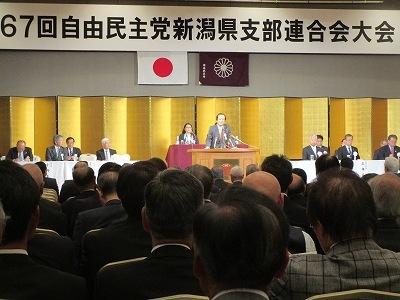 第67回自由民主党新潟県支部連合大会_f0019487_20564672.jpg