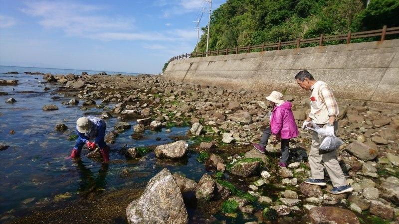 山から海へ〜磯観察会と遊具づくり_c0239329_07581235.jpg