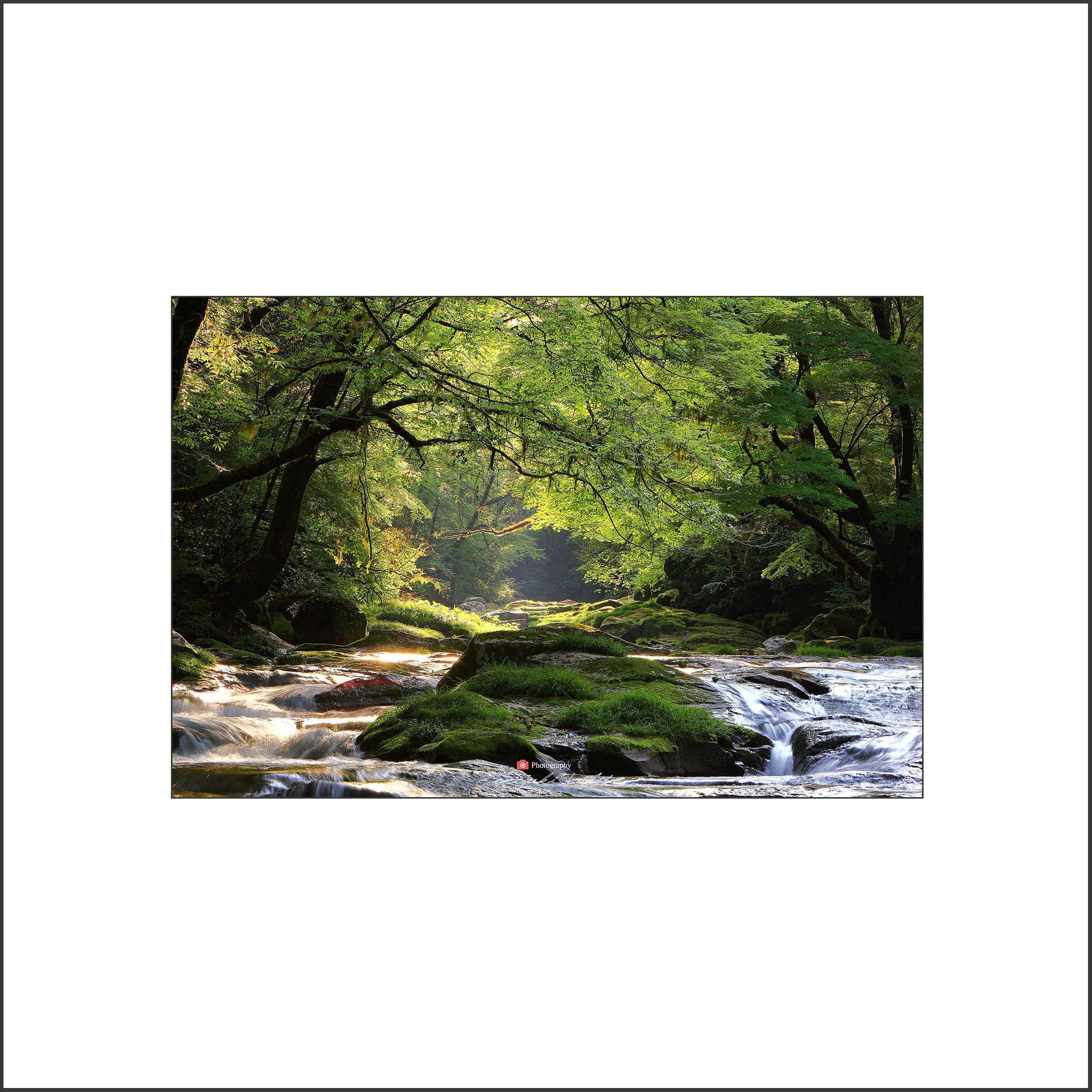 水辺の季節_c0253556_06051449.jpg