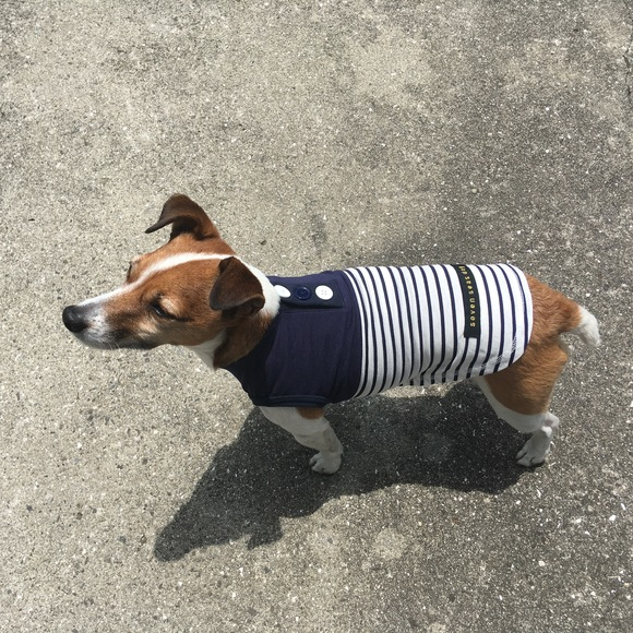 seven seas dog COOLISH Border T セブンシーズドッグ クーリッシュ ボーダーTシャツ ミラキュラス クール_d0217958_12283534.jpg