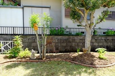 お庭の大掃除_b0194861_16485556.jpg