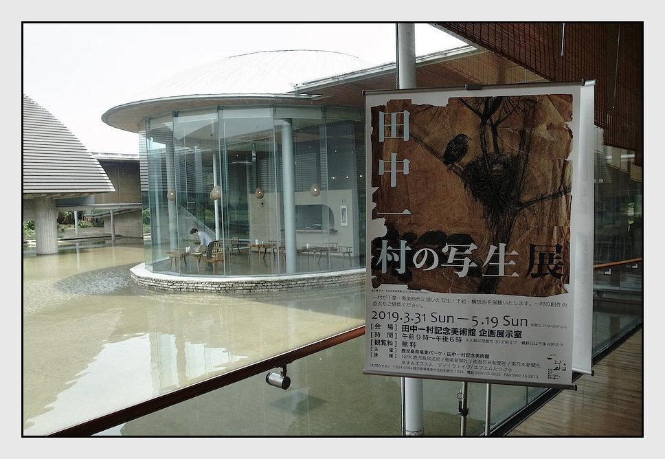 奄美大島 -11_b0340572_19294963.jpg