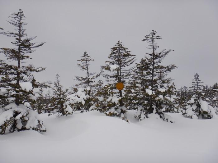 蔵王・刈田岳 ~ 2019年3月30日_f0170180_22194242.jpg