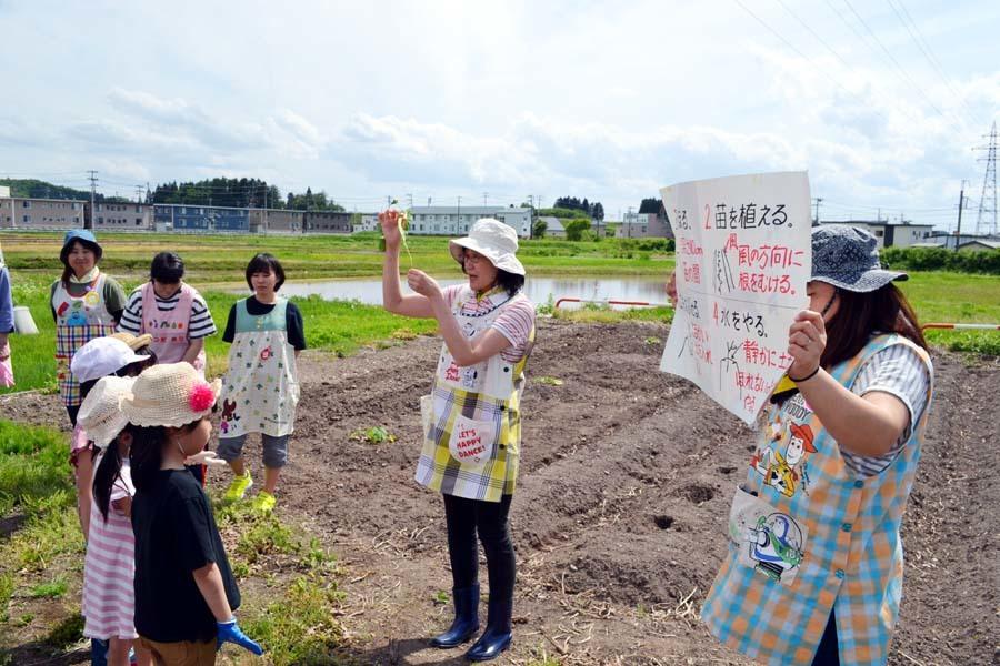 芋の苗植えを行いました。_d0353789_15245466.jpg