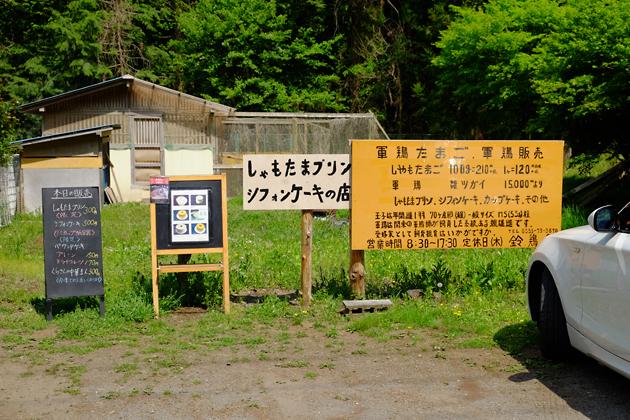 富士山とネモフィラ♪_f0179404_21162685.jpg