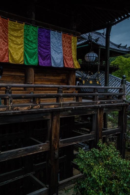 長谷寺のぼたんまつり_e0363038_13090945.jpg