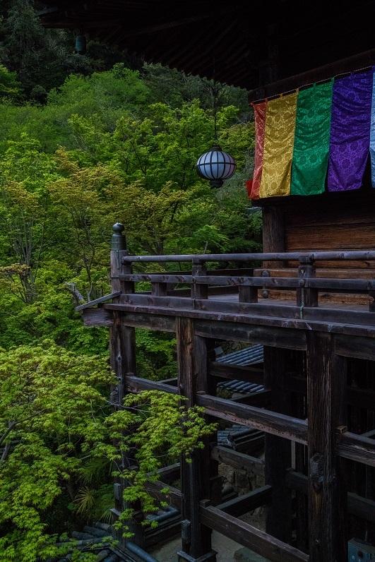 長谷寺のぼたんまつり_e0363038_13091353.jpg