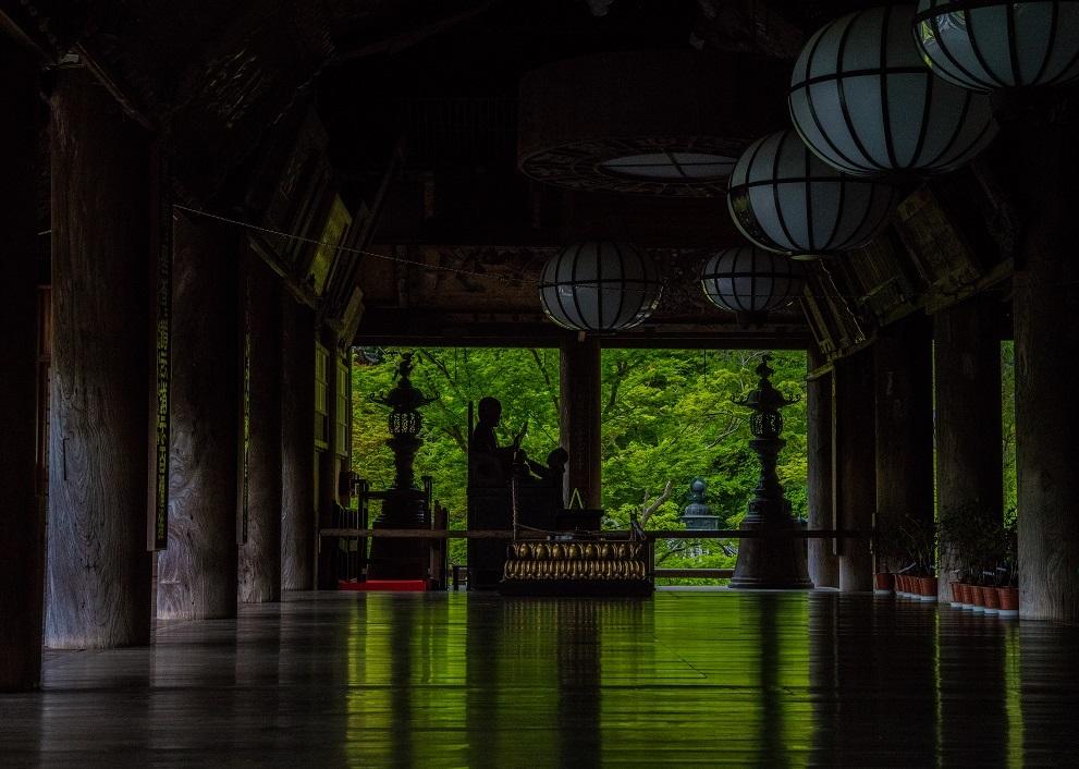 長谷寺のぼたんまつり_e0363038_13091720.jpg