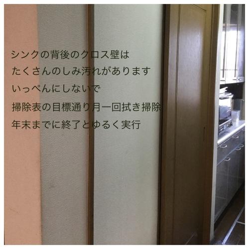 ホームパーティ &  定期的拭き掃除にトライ & 水漏れ!_a0084343_12121303.jpeg