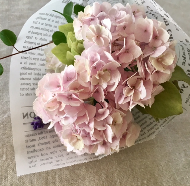 mini bouquet   母へ紫陽花のお裾分け♪_a0165160_15351395.jpg