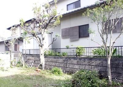 お庭の大掃除_b0194861_08464967.jpg