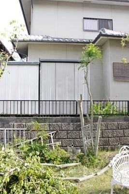 お庭の大掃除_b0194861_08465402.jpg