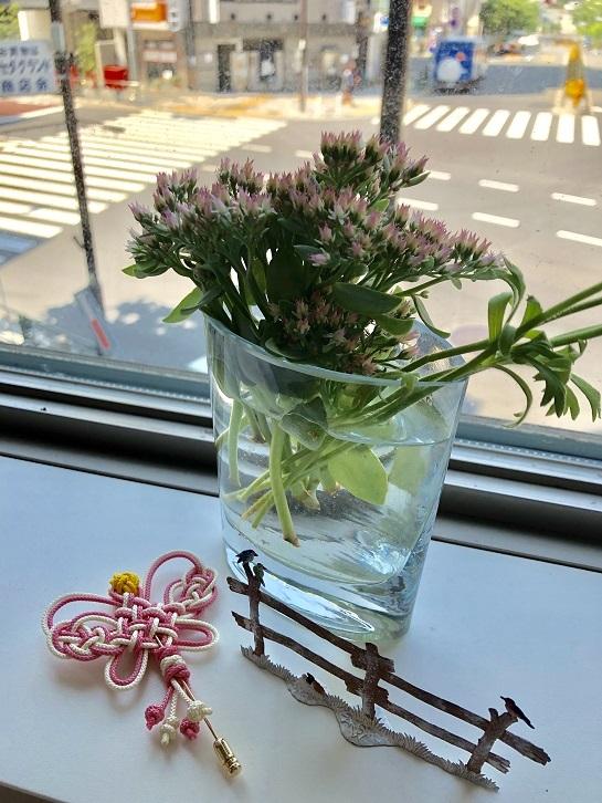 可愛いメドゥプと美味しいお菓子、韓国梅シロップ作りは?_b0060363_23075216.jpeg