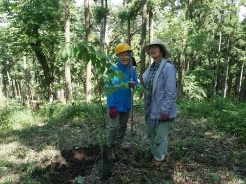 ASEAN常駐代表委の代役で六国見山に山桜植樹5・23_c0014967_12424535.jpg