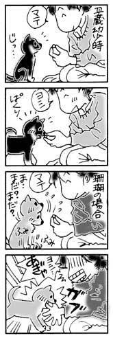 2003年10月22日のシバツレ漫画_b0057675_16114647.jpg
