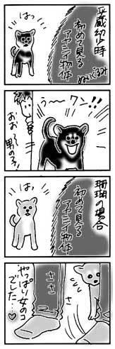 2003年10月22日のシバツレ漫画_b0057675_16115105.jpg