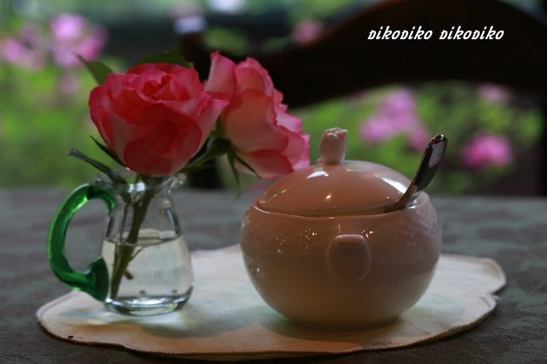 薔薇を見ながら お茶しましょ