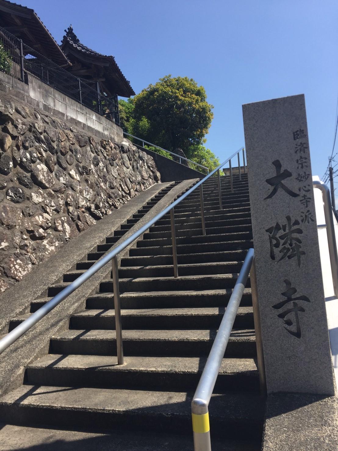 権現庵 ランチ_e0115904_03053981.jpg