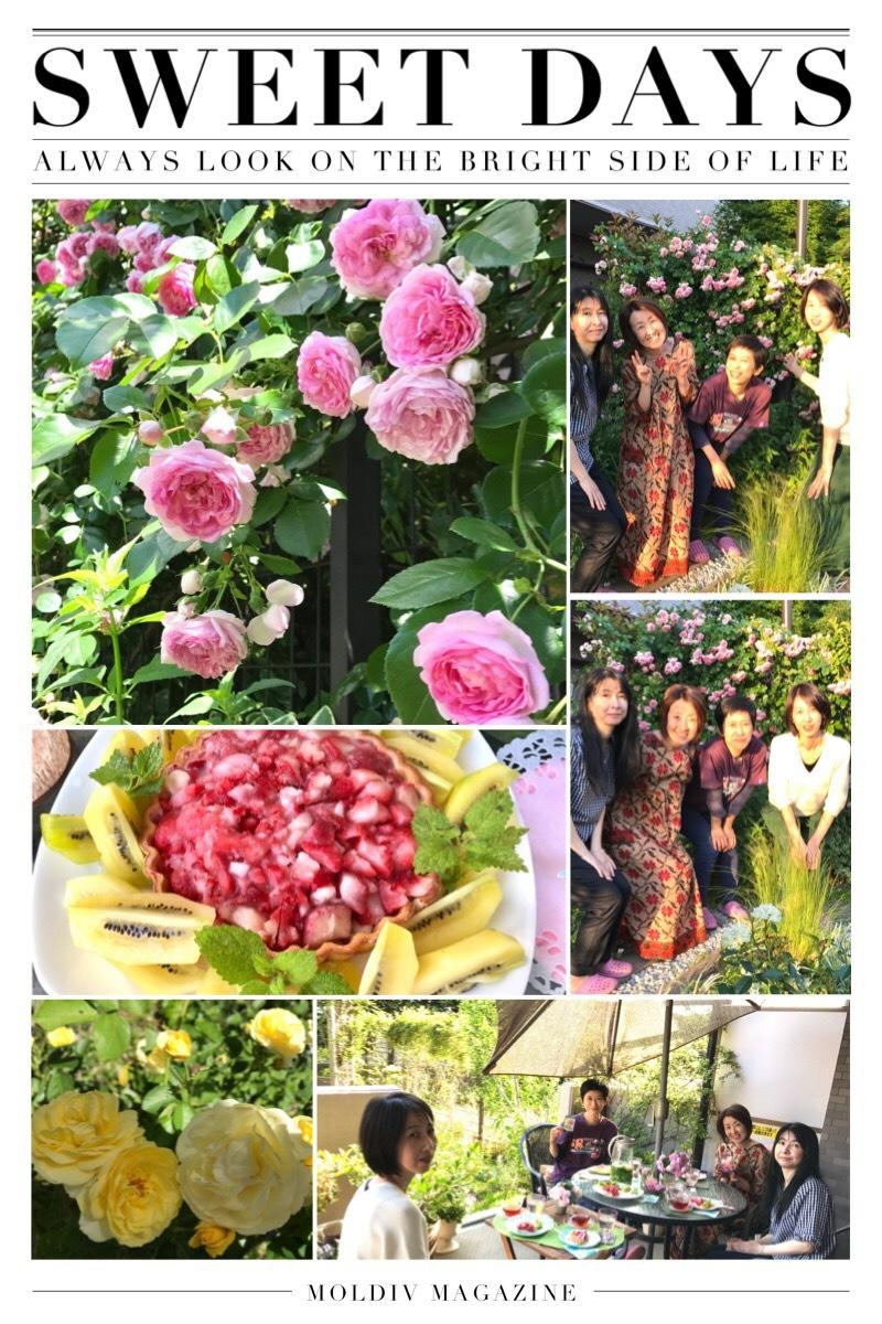 薔薇のお茶会~目覚めへ向かって~_d0085018_23472744.jpg