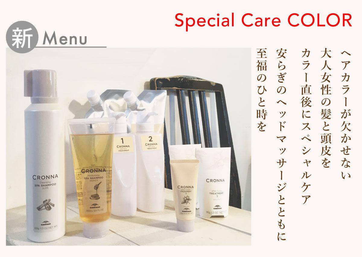 新メニュー「 Special Care COLOR 」のご案内です_e0120930_15291129.jpg