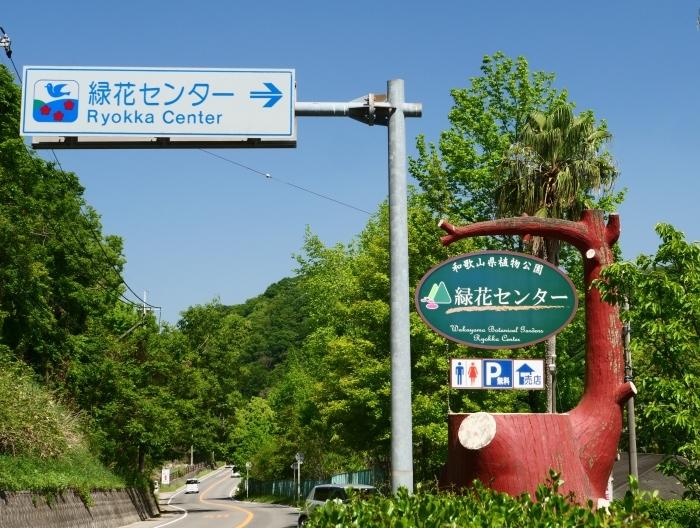 和歌山県植物公園緑花センター  2019-05-30 00:00   _b0093754_20371619.jpg