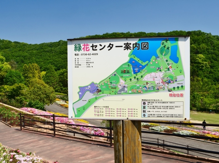 和歌山県植物公園緑花センター  2019-05-30 00:00   _b0093754_20372699.jpg