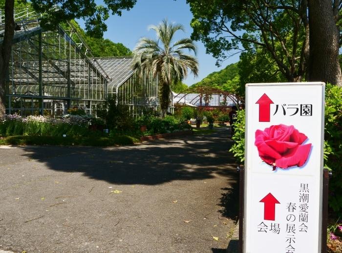 和歌山県植物公園緑花センター  2019-05-30 00:00   _b0093754_20375938.jpg
