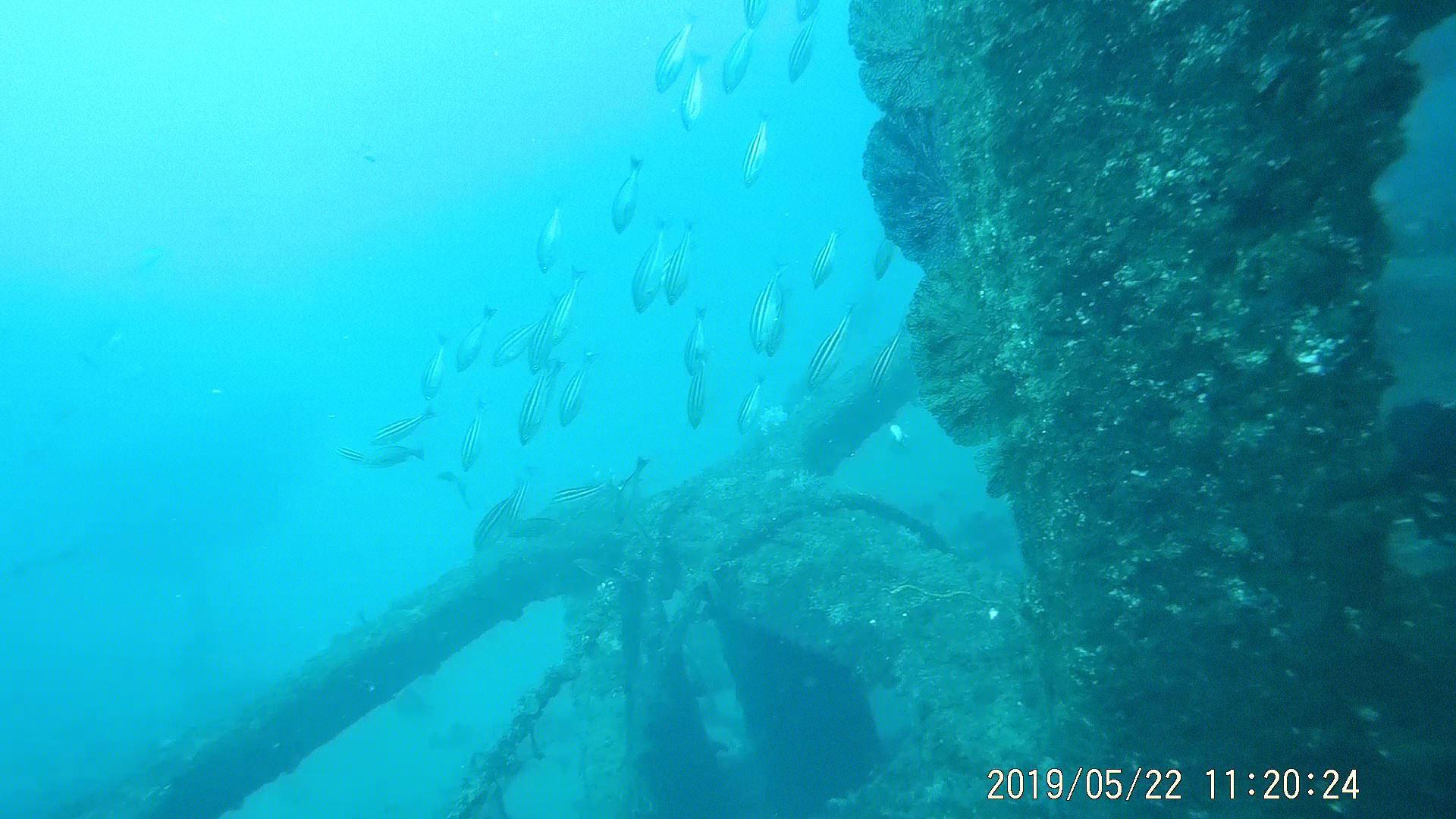 0522 人工魚礁研究会 波佐間_b0075059_15401918.jpg