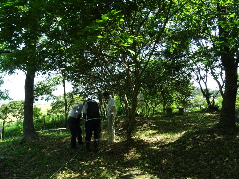 和歌山市立楠見西小学校:3・4年生遠足「うみべの森探検」_c0108460_16274818.jpg
