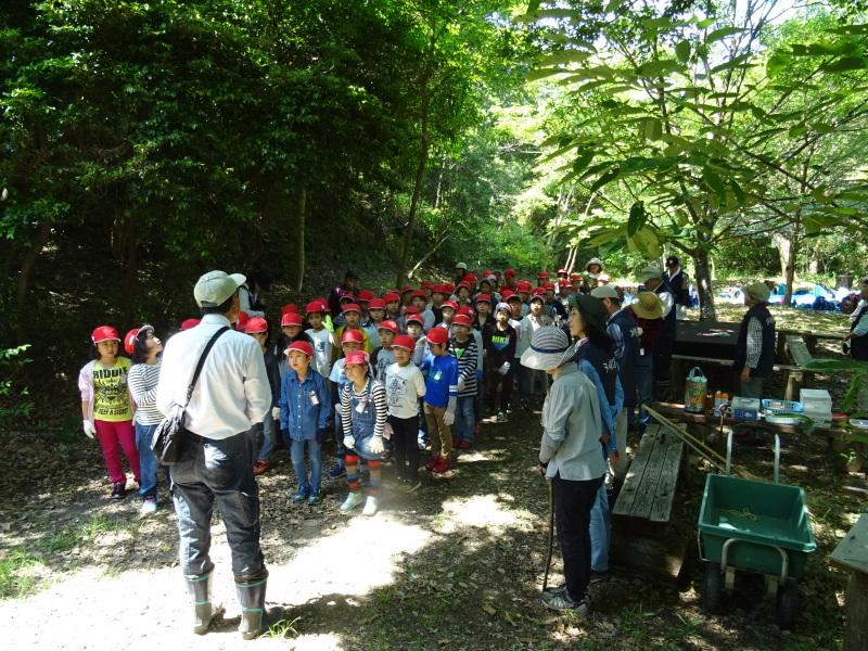 和歌山市立楠見西小学校:3・4年生遠足「うみべの森探検」_c0108460_16284723.jpg
