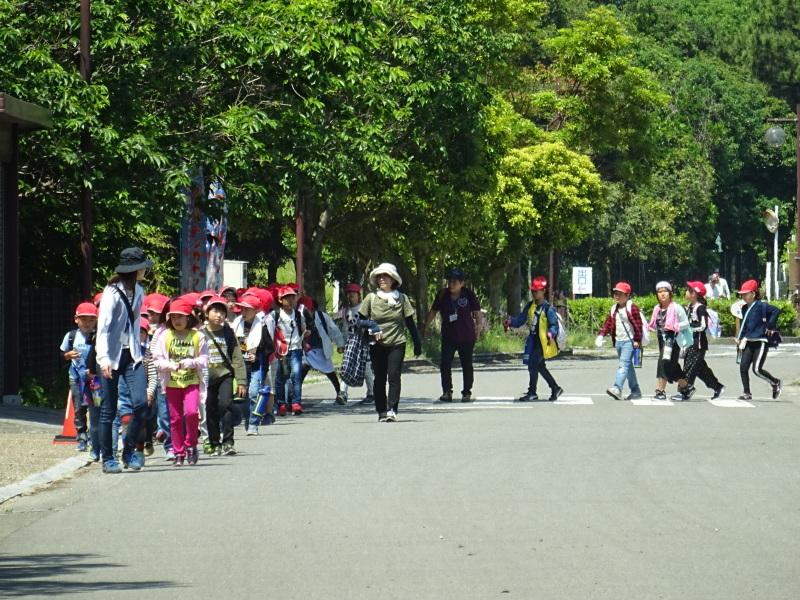 和歌山市立楠見西小学校:3・4年生遠足「うみべの森探検」_c0108460_16284876.jpg