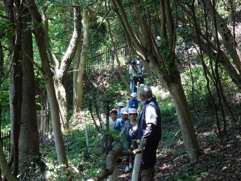 和歌山市立楠見西小学校:3・4年生遠足「うみべの森探検」_c0108460_16331717.jpg