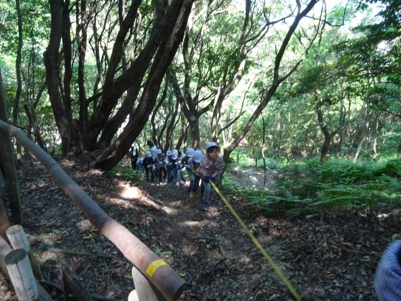 和歌山市立楠見西小学校:3・4年生遠足「うみべの森探検」_c0108460_16331829.jpg