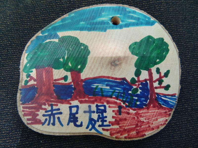 和歌山市立楠見西小学校:3・4年生遠足「うみべの森探検」_c0108460_16385642.jpg