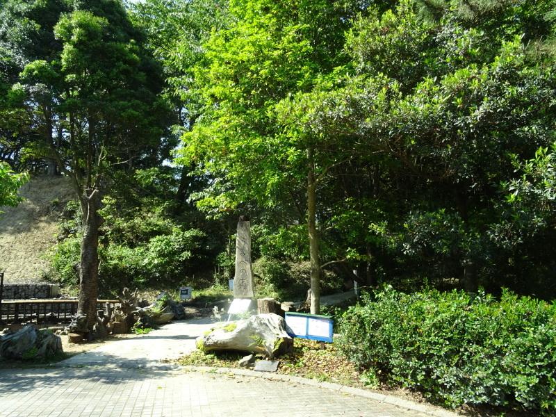 和歌山市立楠見西小学校:3・4年生遠足「うみべの森探検」_c0108460_16411306.jpg