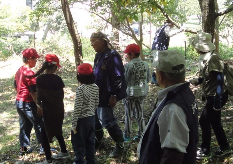 和歌山市立楠見西小学校:3・4年生遠足「うみべの森探検」_c0108460_20032615.jpg