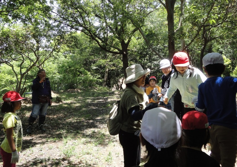 和歌山市立楠見西小学校:3・4年生遠足「うみべの森探検」_c0108460_20032757.jpg