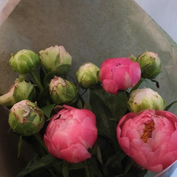 オークリーフ(母の日の花束)_f0049672_21104215.jpg
